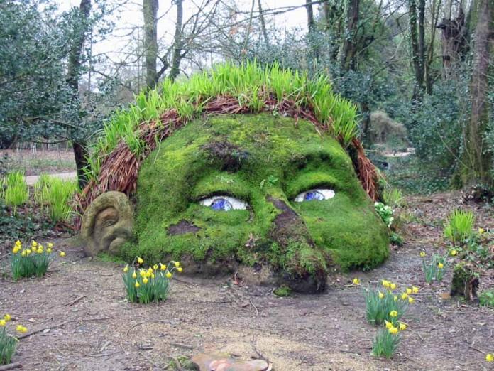 Unusual Moss Ornament