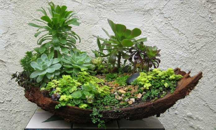 Mini Garden Ideas mini garden design Mini Zen Garden