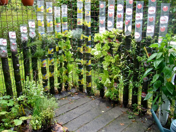 Bottle towers vertical gardening