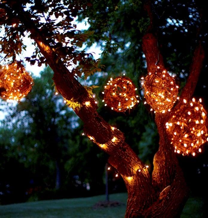 Grapevine orb lighting