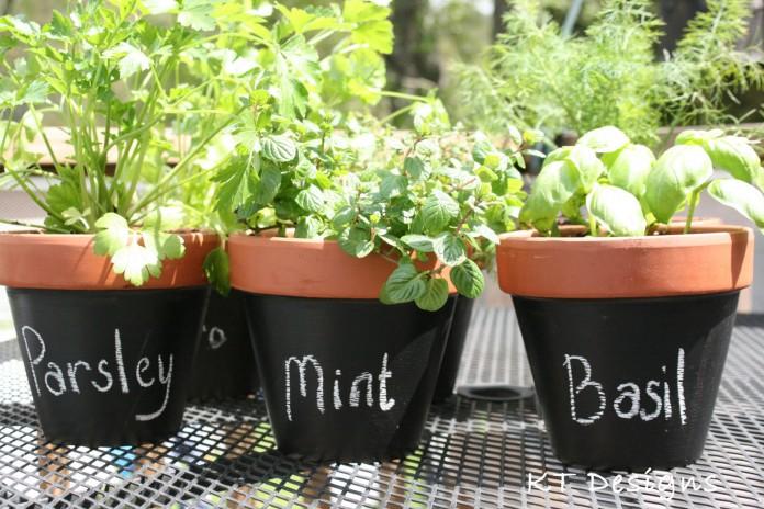 chalkboard flowerpots