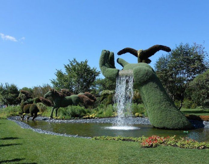 Horse shapes topiary