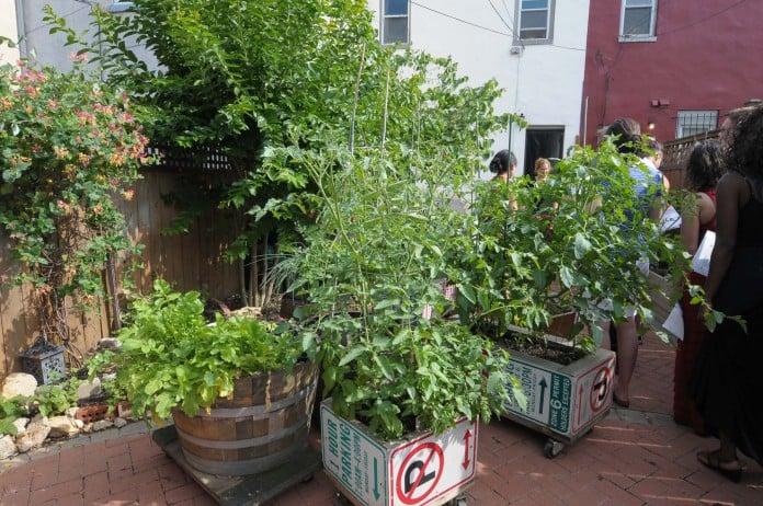Ubran Garden Edible Landscape Containers