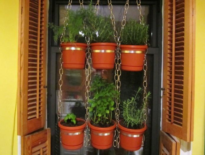Urban herbs flower pots
