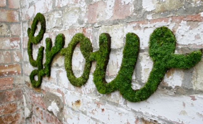 Moss garden ideas - graffiti