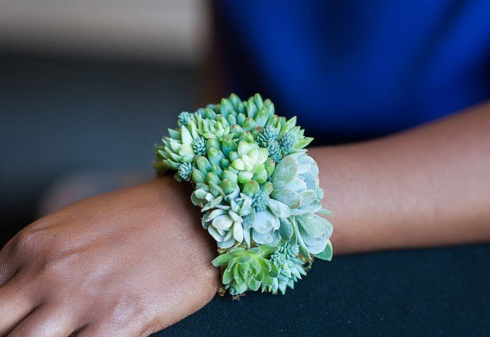 Living succulent bracelet