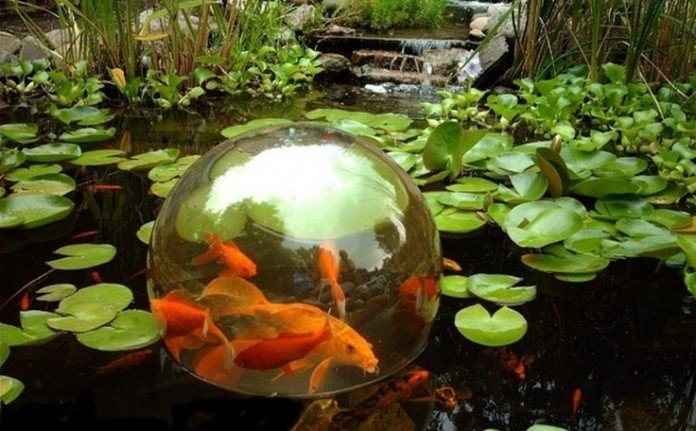 Water Garden and Koi Pond Designs