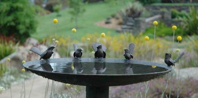 Willie Wagtail and Wren Bird Bath