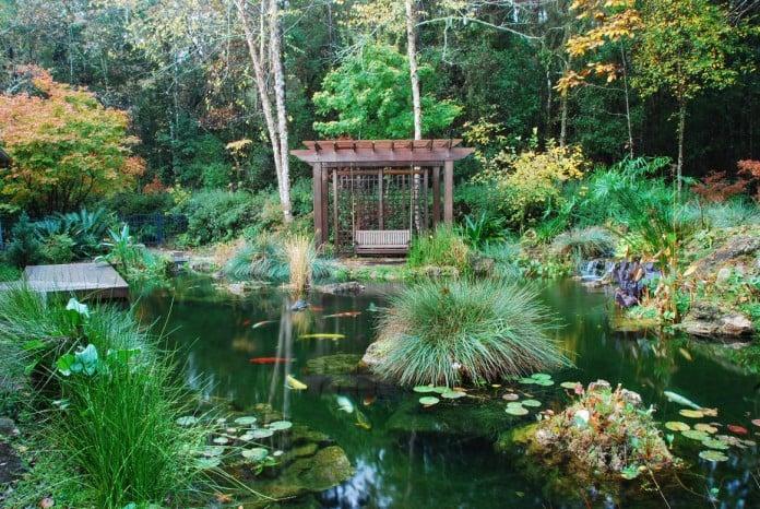 Anese Design Koi Pond