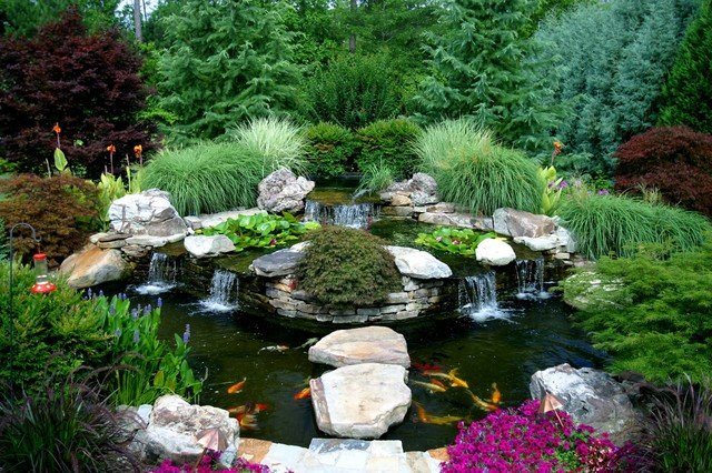 Water Garden and Koi Pond Designs for the Backyard and Patio on Backyard Koi Pond Designs id=54446
