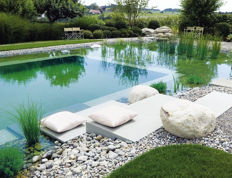 Natural swimming pool with seating