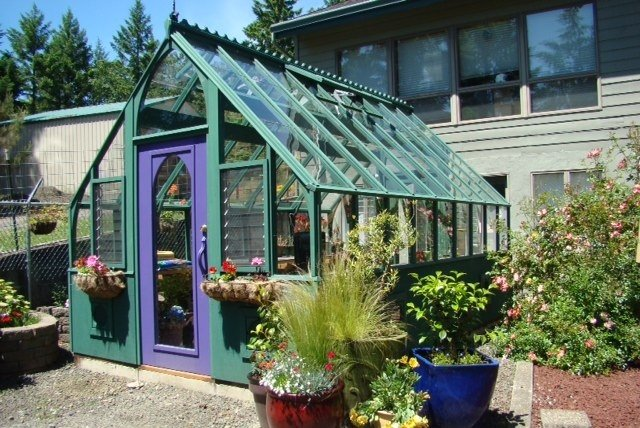 colorful-greenhouse-tudor-from-sturdi-built