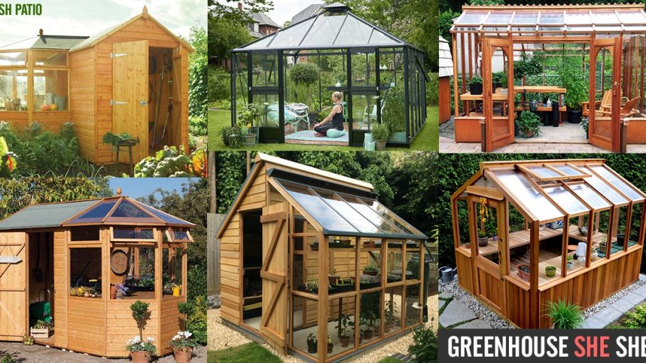 Greenhouse SHE Shed DIY Kit Ideas