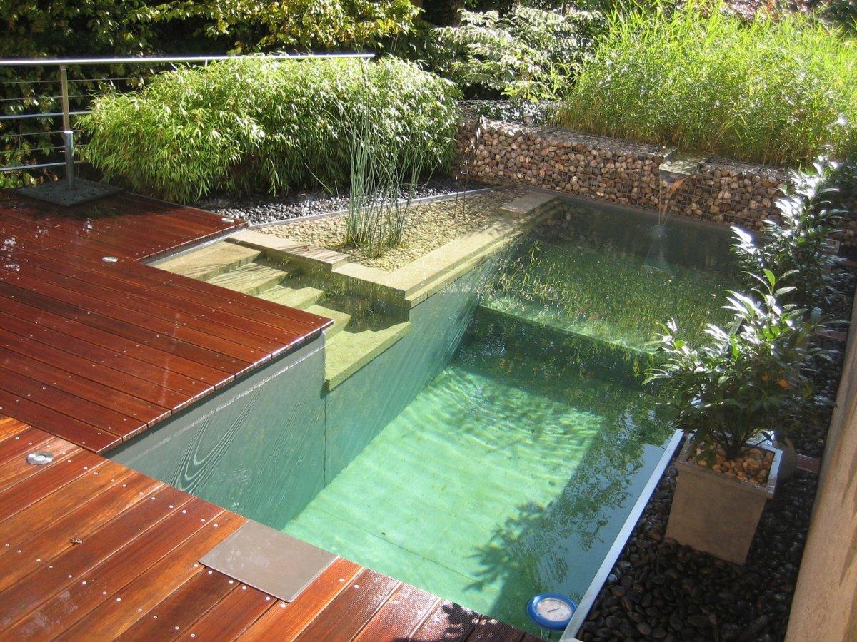 Small E Natural Swimming Pool
