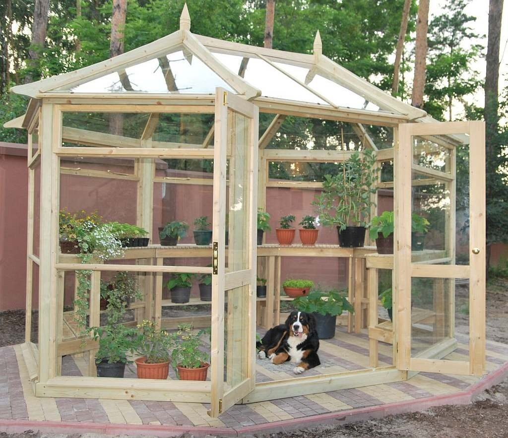 she-shed-as-an-octagonal-greenhouse