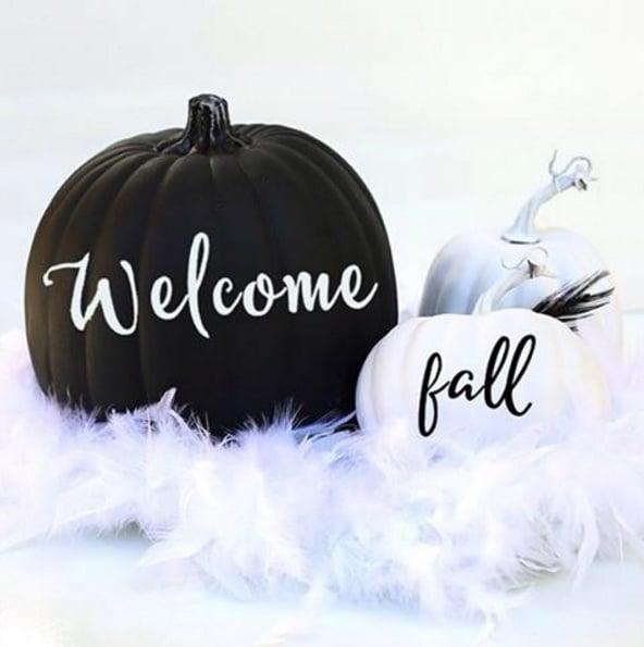 black-and-white-chic-pumpkins