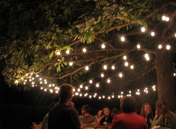 White Bulb String Lights