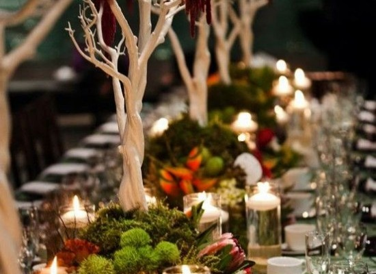 Bare trees as the centerpiece
