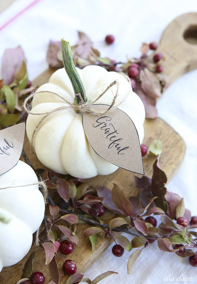 White pumpkins are elegant fall decor items