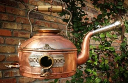 Cool Copper Coffee Pot and Horn Birdhouse