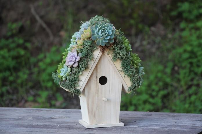 unbelievable bird house designs. Succulent Roof BirdHouse 40 Awesome Backyard Birdhouse Designs