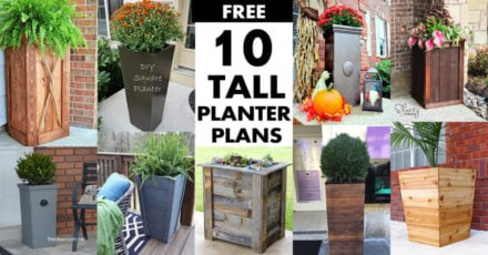 Tall Planter Box Plans (Free)