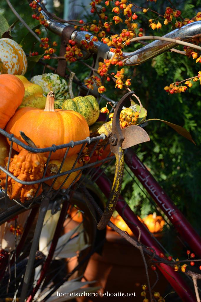 Use bike basket to display pumpkins