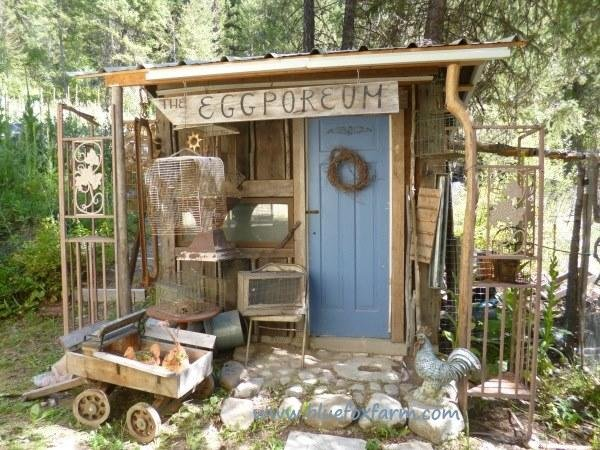Shed Decorating Idea for Chicken Lovers