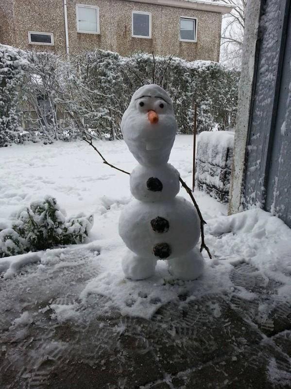 Shy Olaf