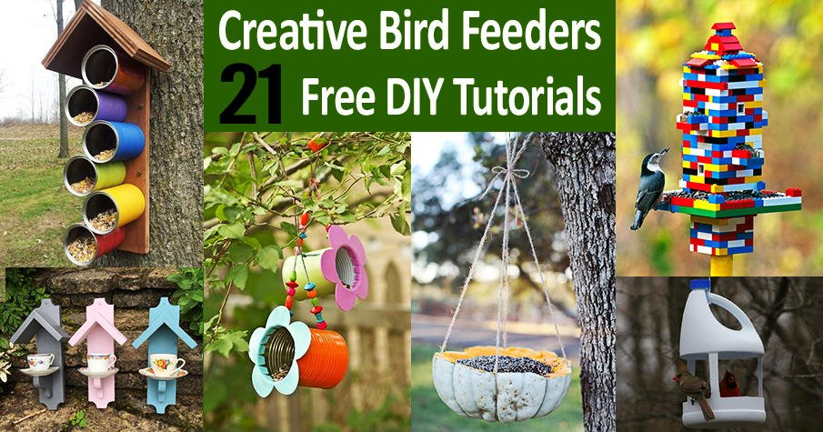 Creative DIY Bird Feeders Designs
