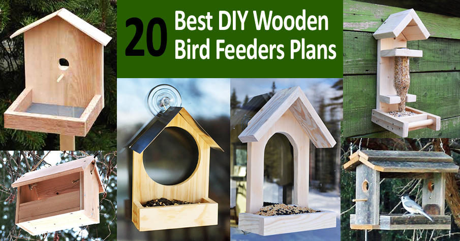 DIY Wood Bird Feeders Plans (FREE)