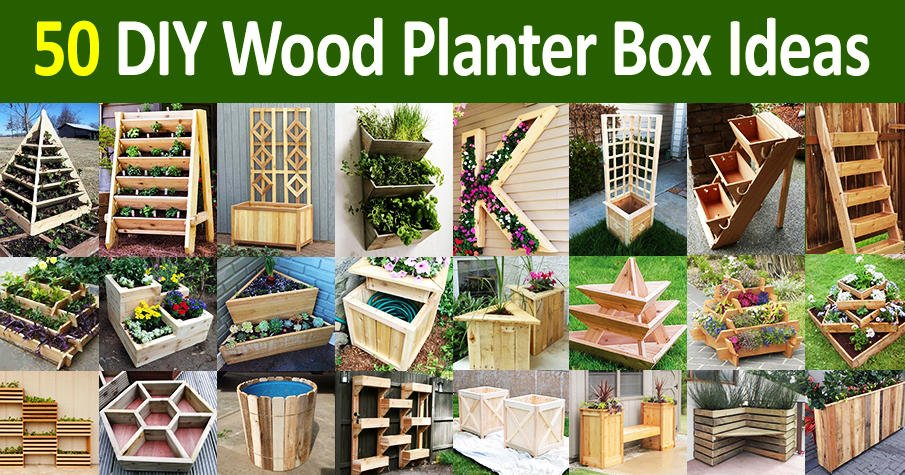 DIY Wooden Planter Box Designs