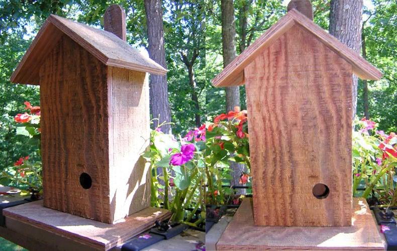 A large wren wooden box