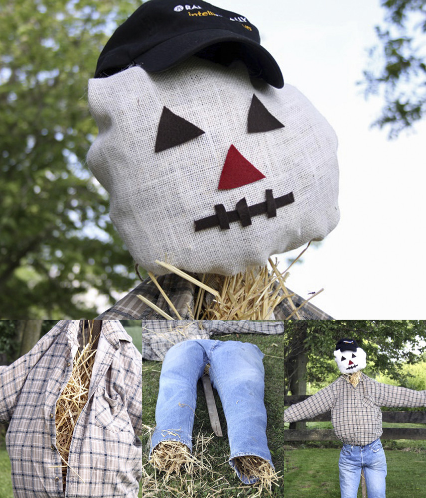 A Garden Scarecrow that Resembles Your Dad