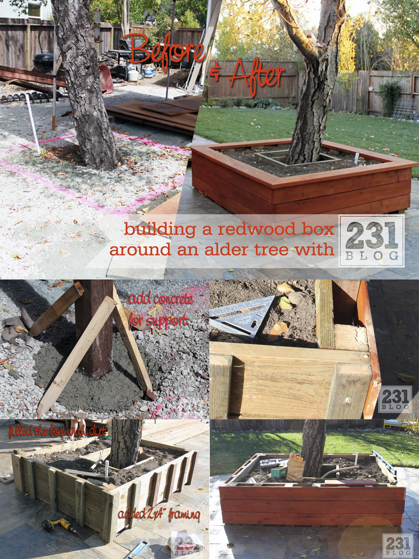 Make a Tree Bench with a planter box