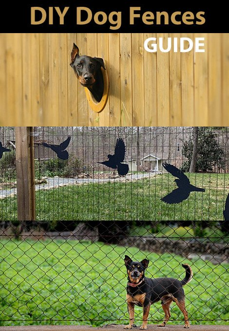 6 DIY Dog Fence Ideas and Installation Tips