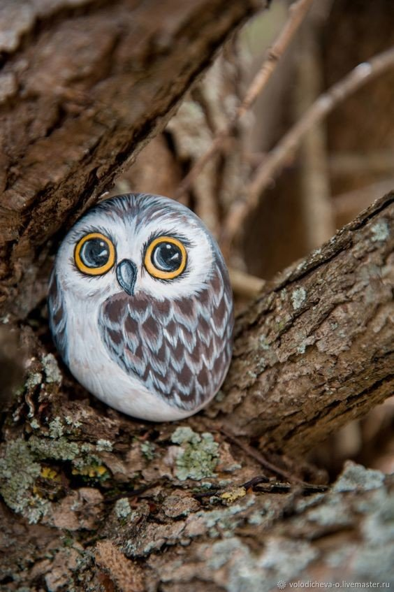 Rock painted owl sitting on a tree