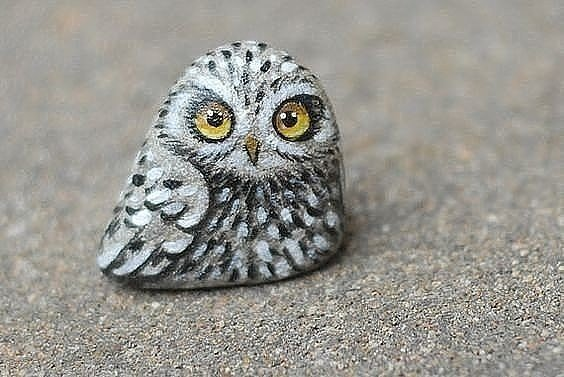 tiny owl rock painting