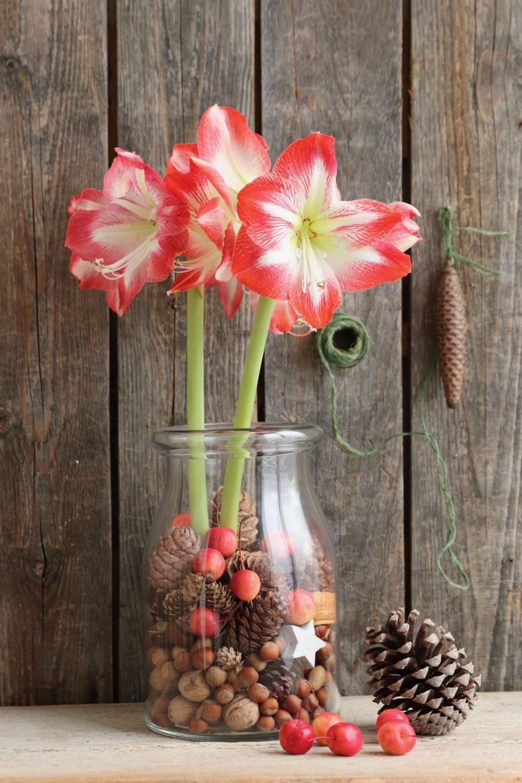 Christmas flower arrangements for a mason jar vase