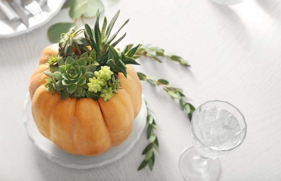 Pumpkin centerpiece with succulents ideas
