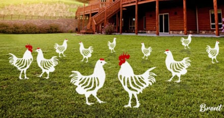 Metal chicken yard art ideas