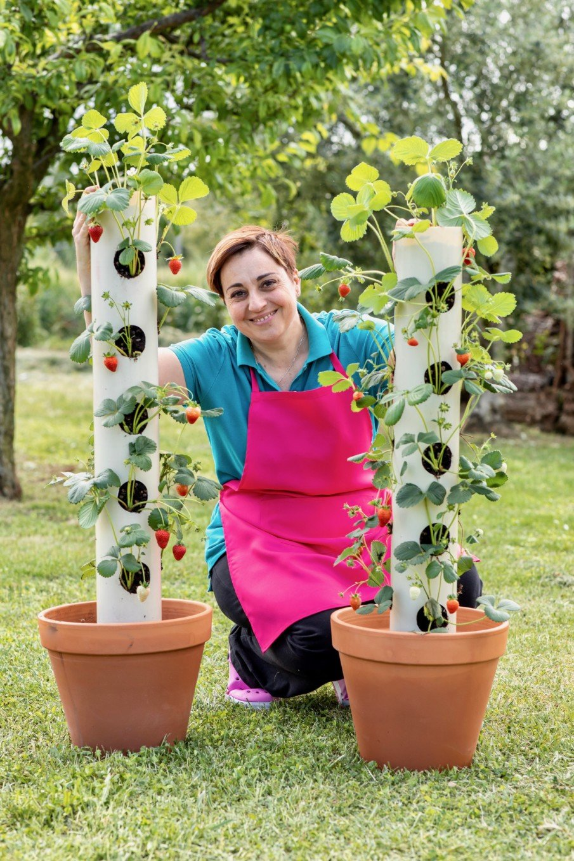 DIY Vertical Strawberry PVC Tube Planter