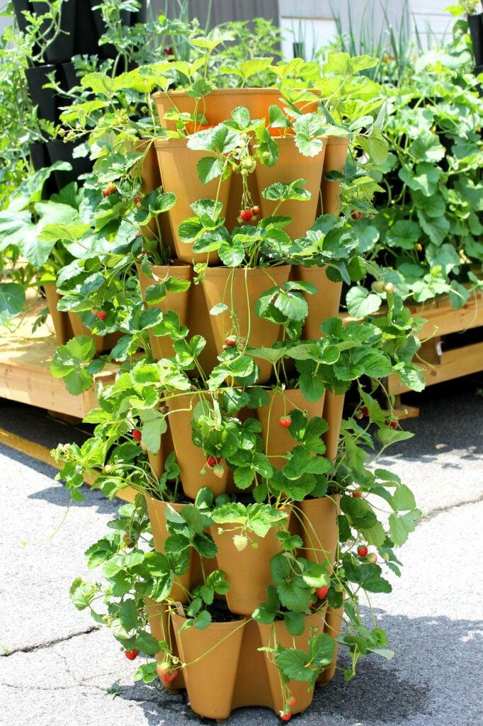 Stack a Pot Planter Idea