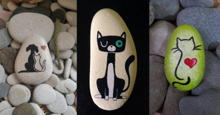 Painted Cat Rocks - Ideas and Images