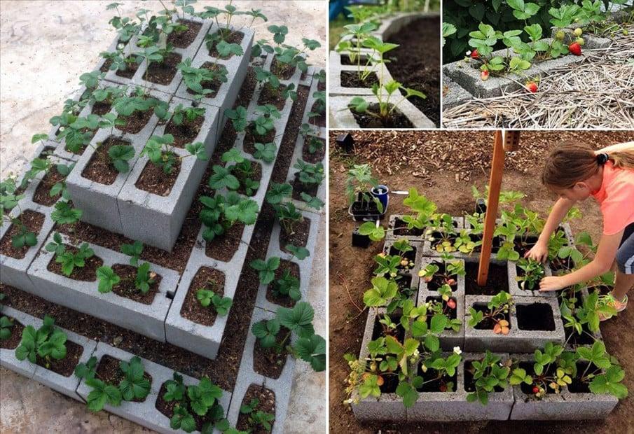 Cinder block tiered strawberry planter ideas