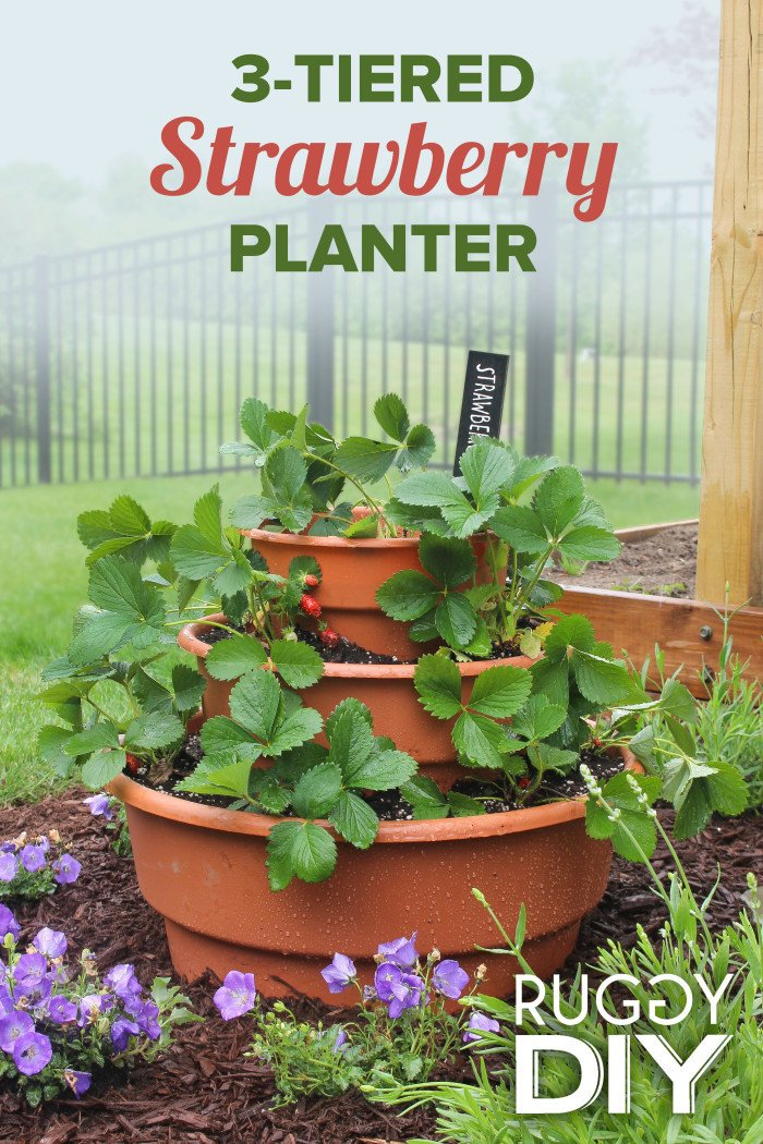 3-tier strawberry planter made with Dura Cotta pots