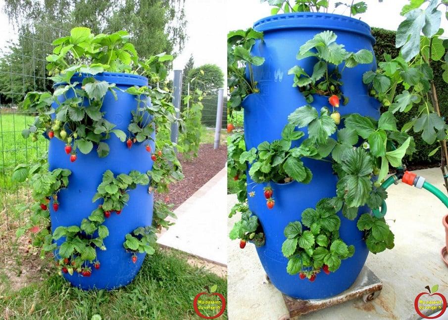 DIY Plastic Barrel Planter Plan