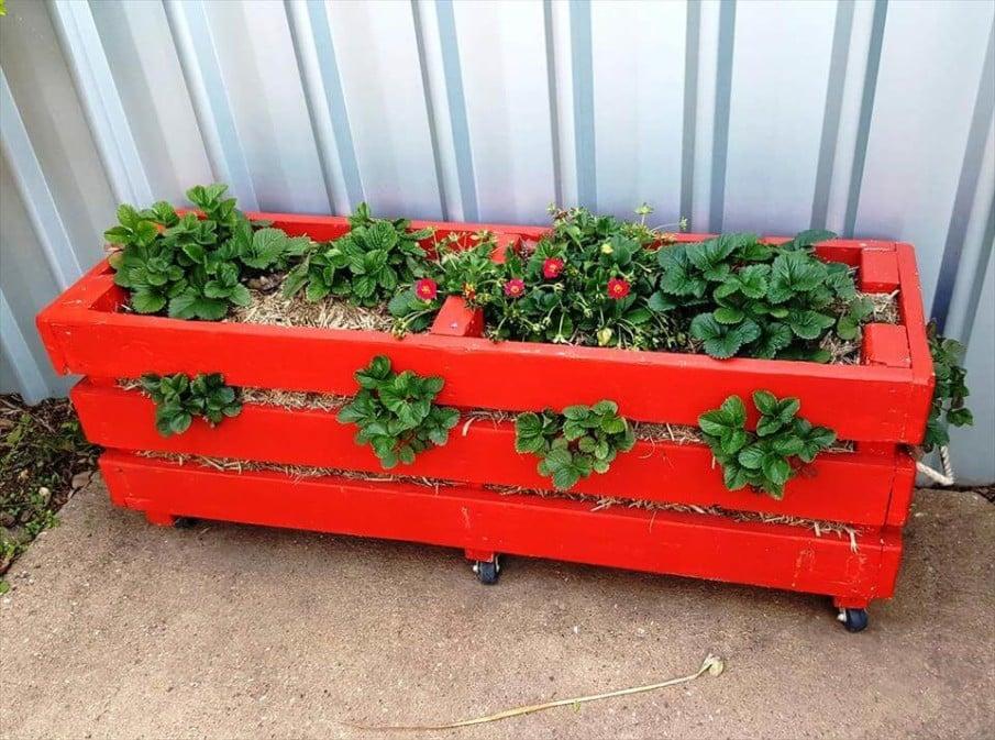 Red strawberry pallet planter box on wheels idea