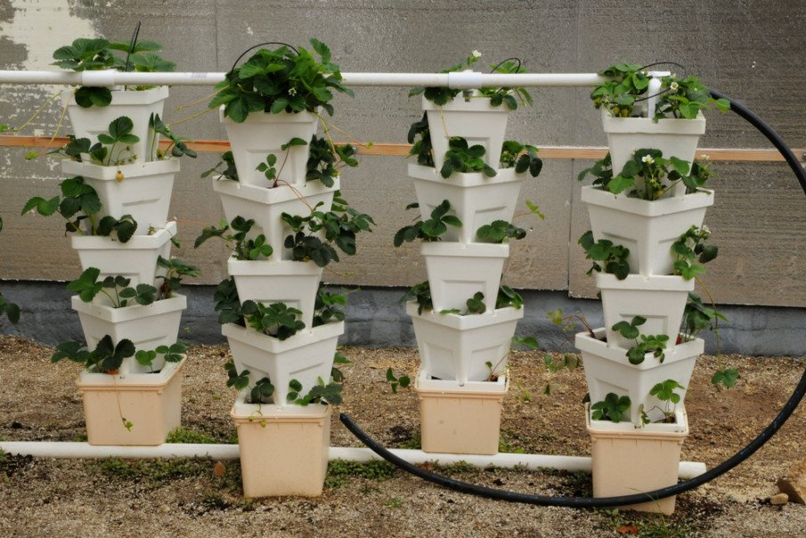 Stacking Planter Irrigating Idea