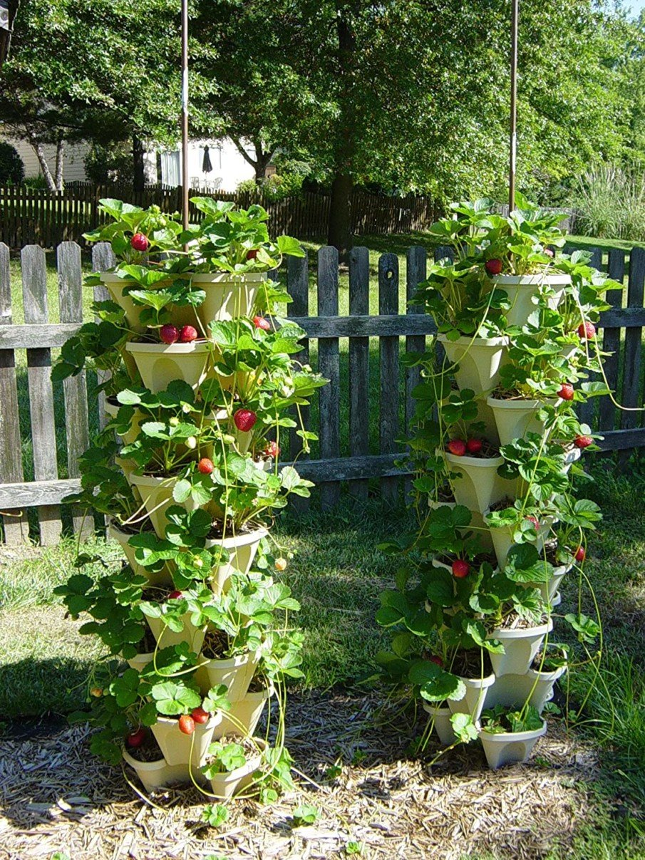 Strawberry stacking planter ideas